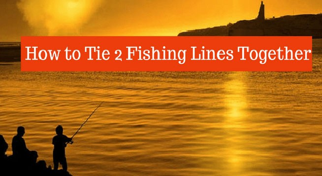 how-to-tie-2-fishing-lines-together