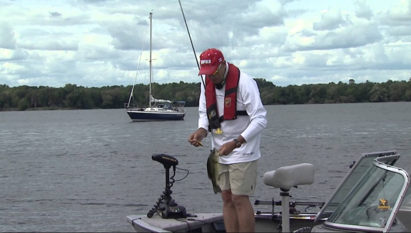 How to Choose and Buy a Crankbait Rod