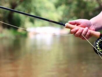 What's the Right Length for a Trout Rod