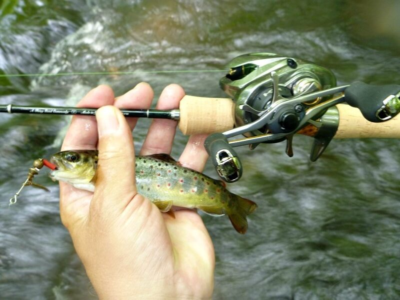 What is Finesse Bass Fishing? How to Use Finesse Rigs
