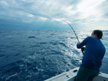Best Bait Position And Trolling Speed For Offshore Fishing Success