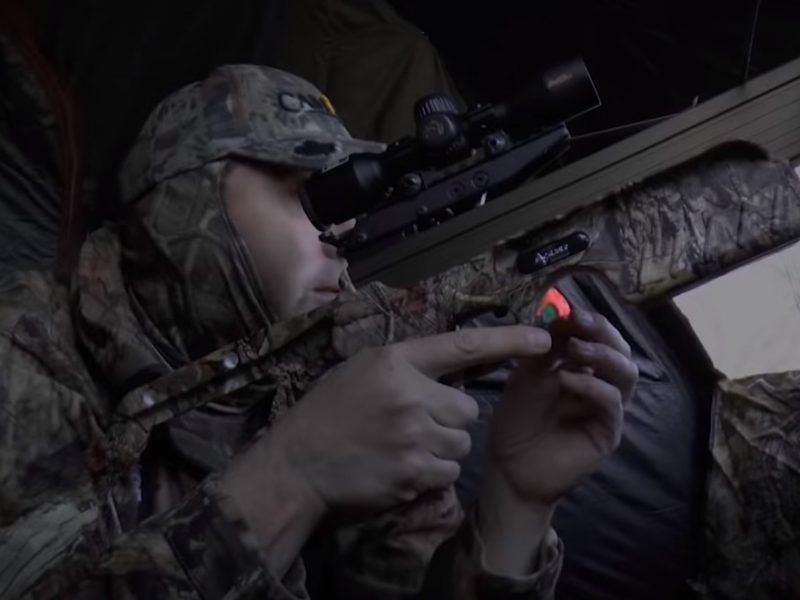 Top Tips for Turkey Crossbow Hunting