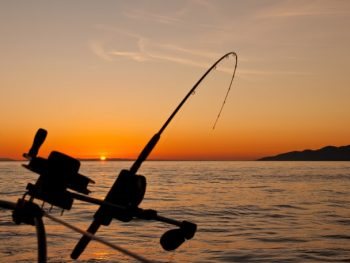 8 Things You Need If You Plan on Going Saltwater Fishing